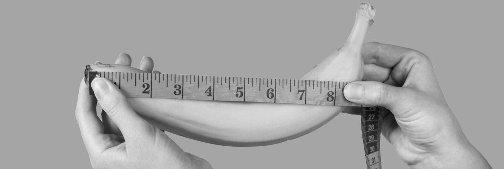 Die Penisgröße der Deutschen
